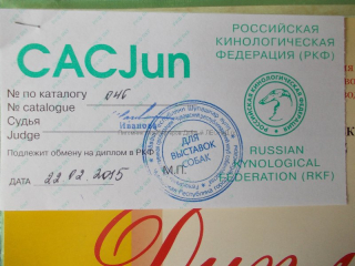 atra_chelyab15_diploma-2