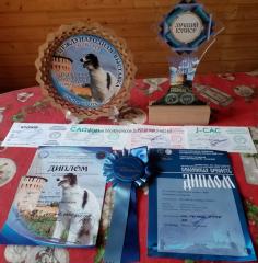 BellBee_Smolensk_2019-3