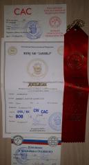 Gercules_20190414_diplomas