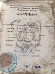 Grey_20180915_Diploma