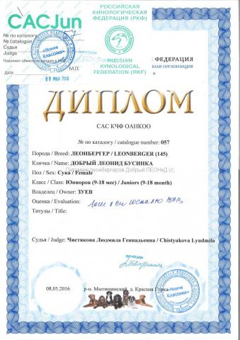 businka_diploma_08052016_2