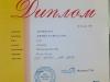 atra_chelyab15_diploma
