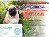 businka-diploma-24042016-2