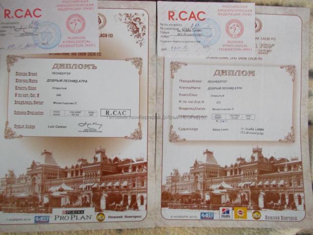atra_07112015_diploma
